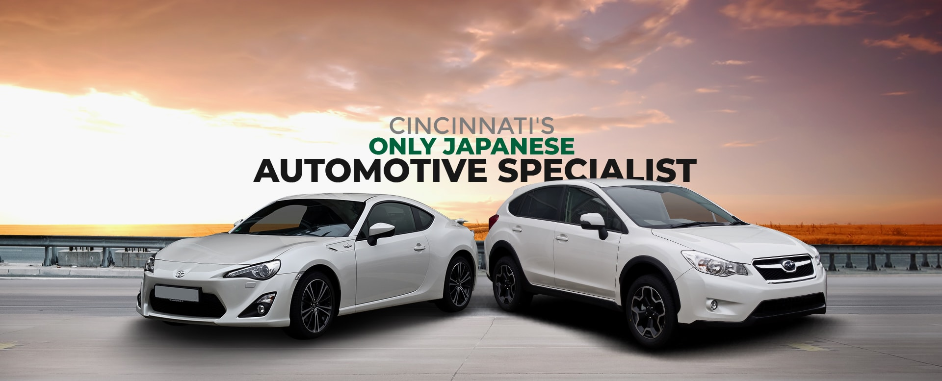 only-japanese-specialists